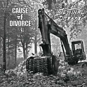 cause of divorce-intestinal disease